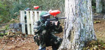 Woodland Paintball Cheap Paintball Guns